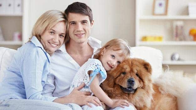 Wills & Trusts dog-young-family Direct Wills Strand